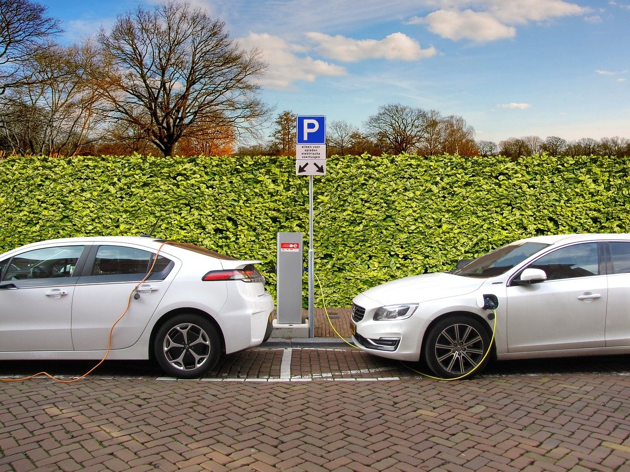 Two Parked White Electric Vehicles Getting Charged Alongside a Field